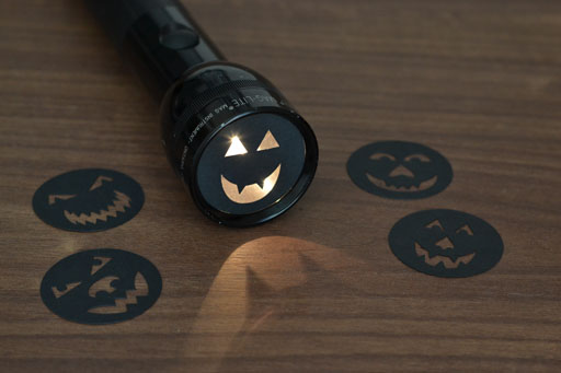 Fall Fever - Read Halloween Themed Books by Flashlight