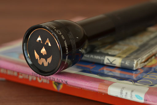 Read Halloween Themed Books by Flashlight